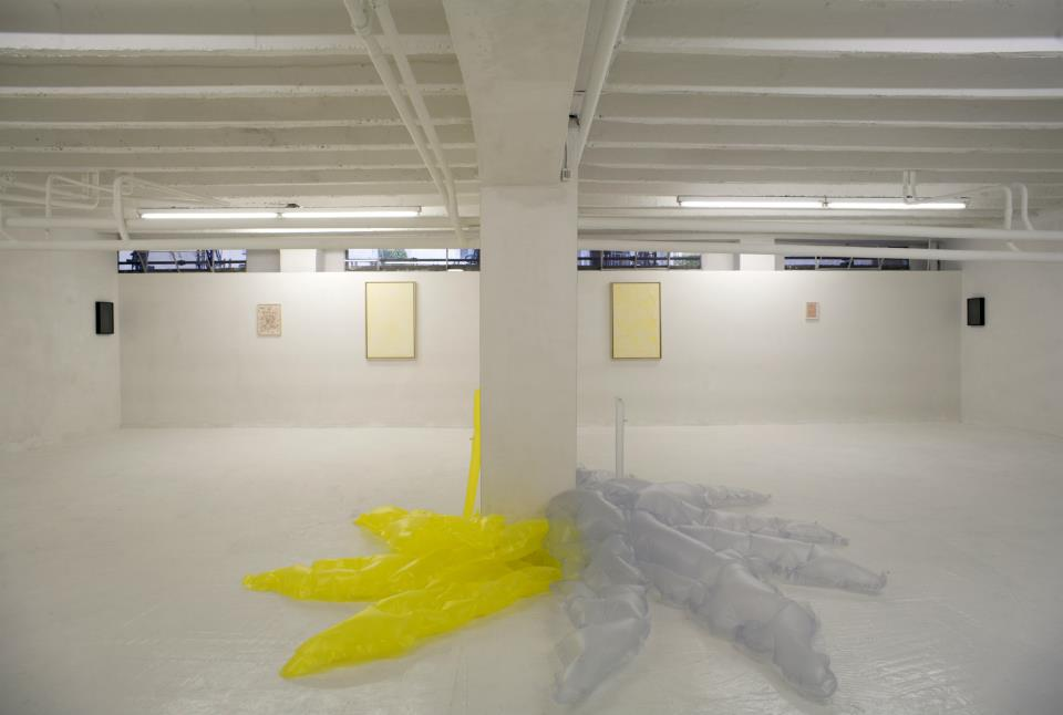 Luca De Leva, Ho perso gli anelli, ma mi restano le dita, exhibition view, ROOM Galleria, 2013