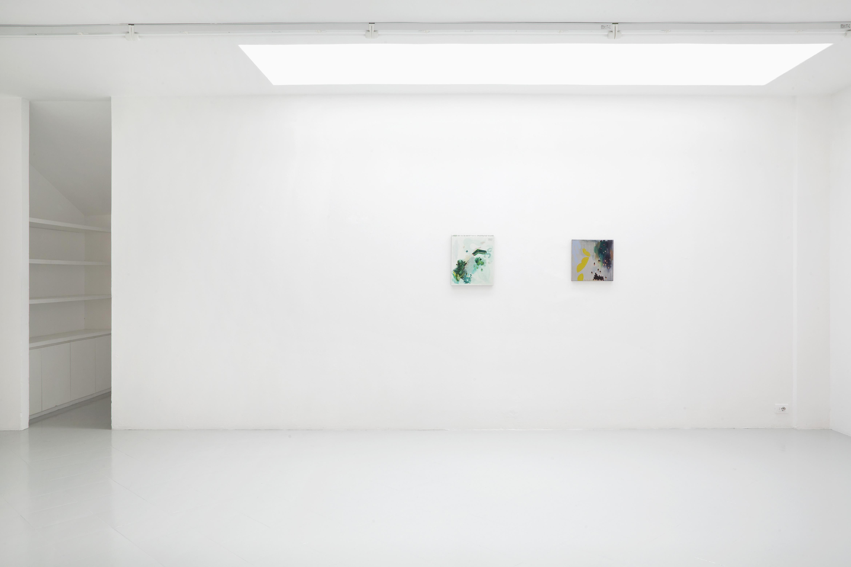 Studiolo #11, Freya Douglas-Morris, 2014 - Courtesy Spazio Cabinet, Milan, photo Filippo Armellin