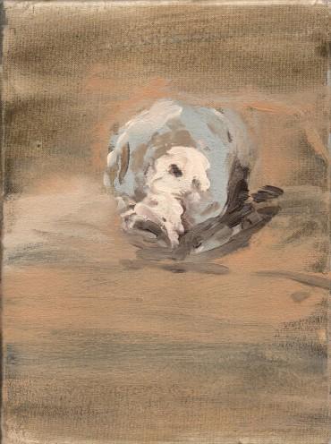 Sebastiano Impellizzeri, Testa portoghese, olio su tela, 18x24 cm, 2014