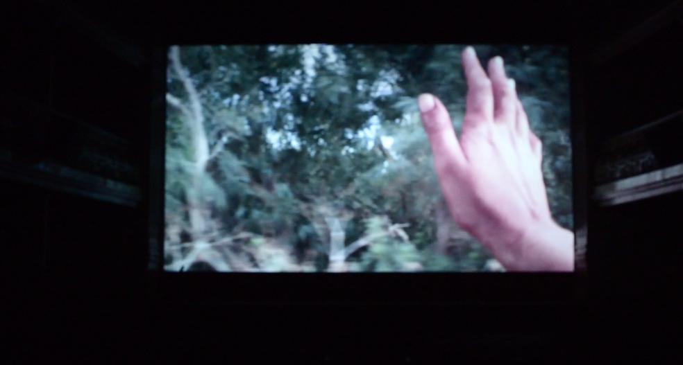 Patrizia Emma Scialpi - Studio per un'invasione, proiezione Cineteatro Cavallera, 2015