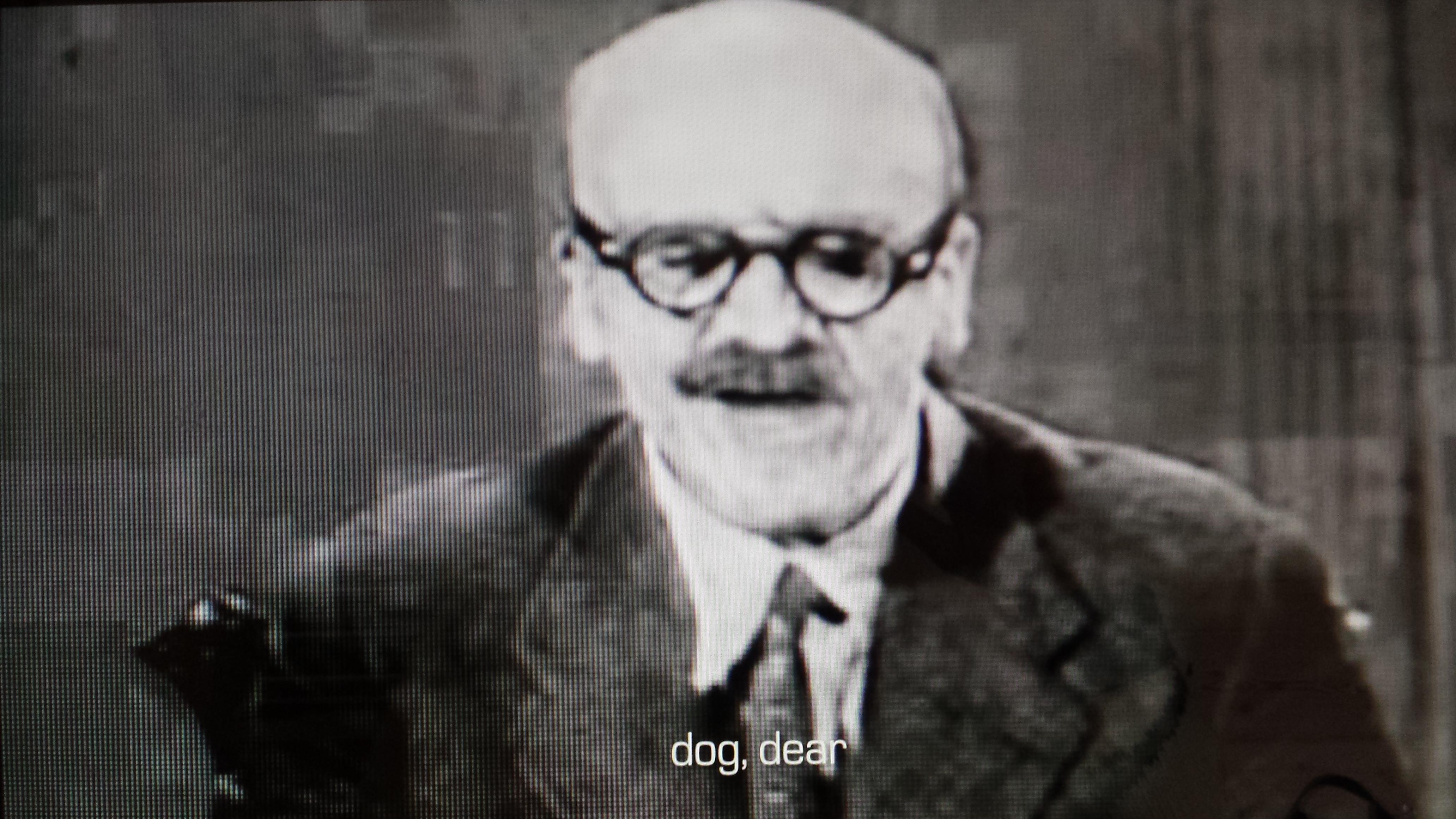 dog dear 2