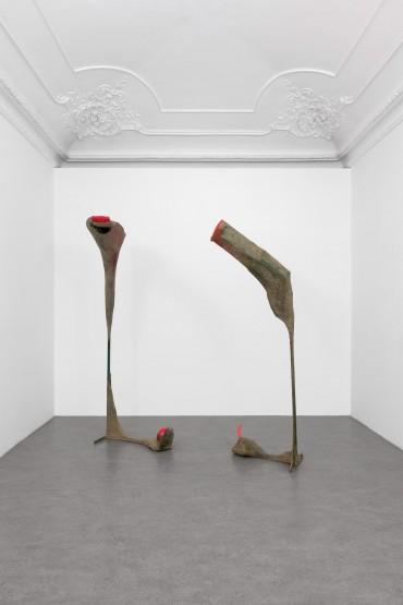 Francesca Ferreri - Cluster Clutter, vista dell'installazione, Galleria Alberto Peola Torino