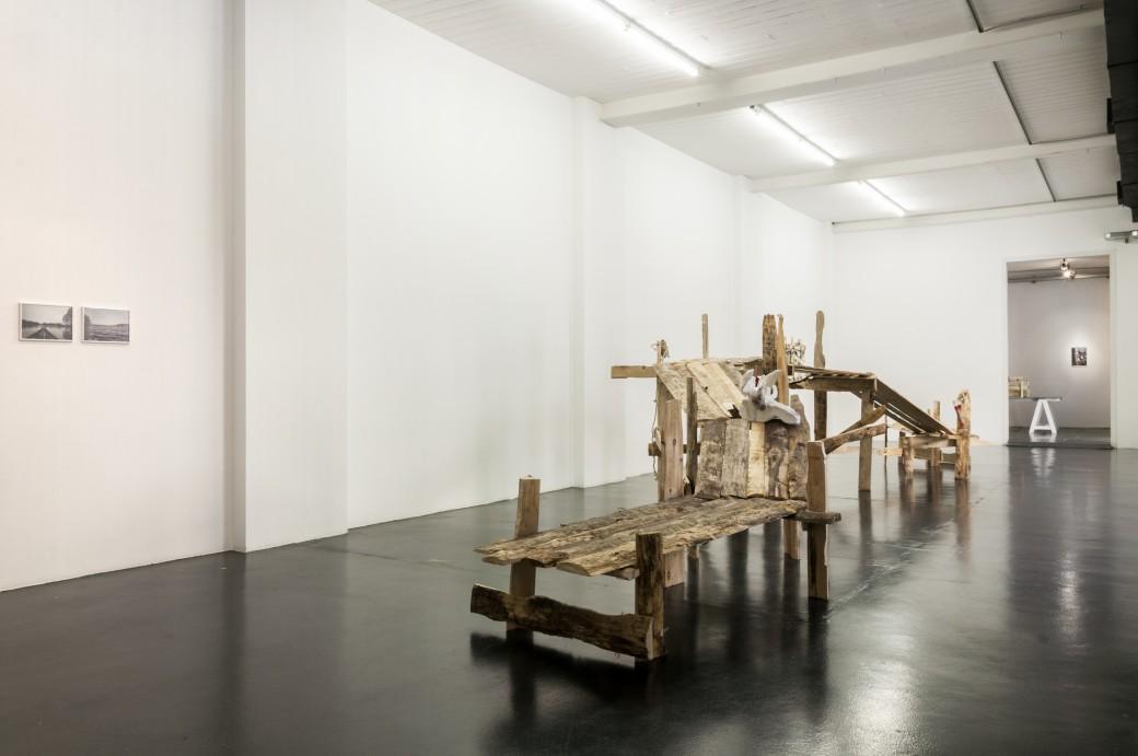 Daniele Girardi, Cronache Selvatiche, installation view. Courtesy Otto Zoo
